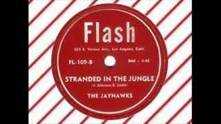 The Jayhawks - Stranded In The Jungle (FLASH) Original version