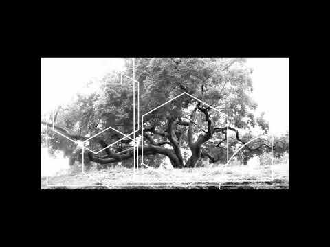 MF Doom - Still Alive (sadevillain)Jesus In Guantanamo. 18^9. Still Alive