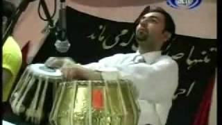 Payman Habibzai - Kaasho Budam (In Memory of Ahmad Zahir)