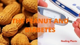 Peanut And Diabetes