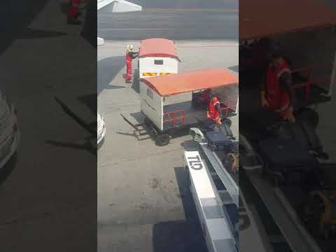 Baggage Handling Staff For AirAsia Throwing Bags On Baggage Tug At KLIA2