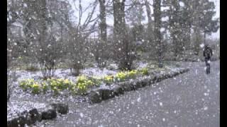 Velikije Luki - Kevad