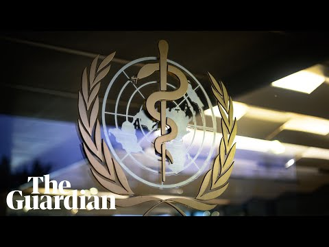 WHO holds news briefing on coronavirus – as it happened