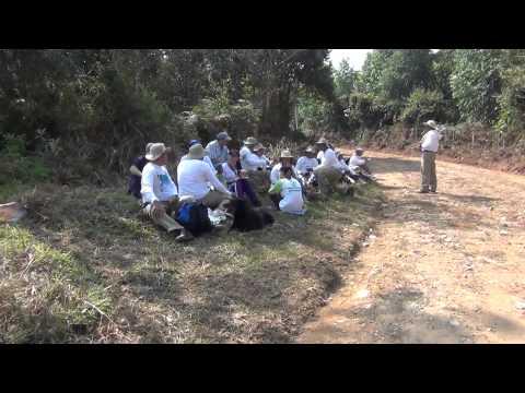 Los de Higuerón, caminata Guadalupe - Río Abajo (Angostura)