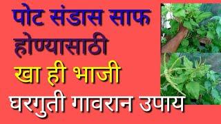 पोट साफ होण्यासाठी खा ही भाजी घरगुती गावरान उपाय | शरीरातील vish potatil ghan baher kadha part :11