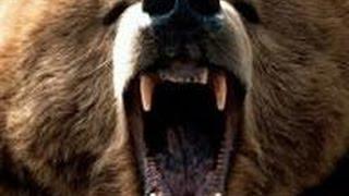 Медведь укусил за спину, когда прикрывала сына / Медведь людоед(Помню, как в меня в челюсть впивается, понимаю, что это медведь, чувствую, как мои кости хрустят, ломаются...., 2015-10-07T09:01:40.000Z)
