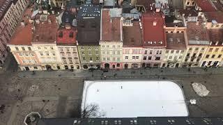 Рестораны, которые стоит посетить во Львове
