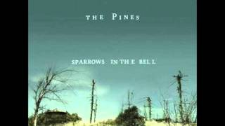 Watch Pines Midnight Sun video