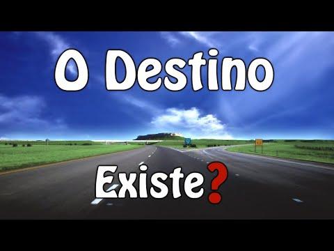 ¿Existe el destino? - Resumen - Luis Bravo