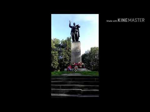 г. Кингисепп. Ленинградская область. Санкт-Петербург