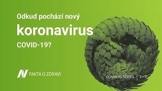 Odkud pochází nový koronavirus COVID-19?