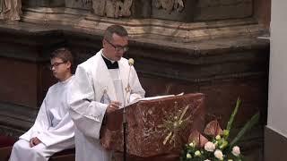 Uroczystość Narodzenia NMP w Tarnowskiej Katedrze - Homilia Ks. Dra Michała Dąbrówki