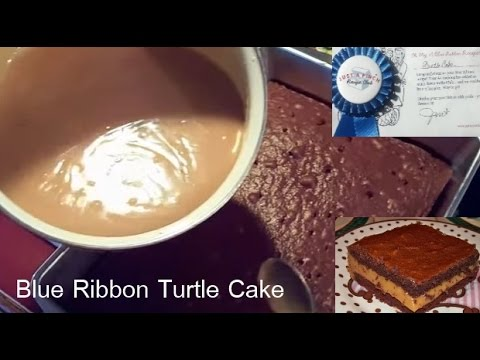 Blue Ribbon Turtle Cake