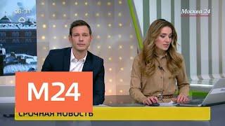Смотреть видео Следующие в столицу электрички задерживаются на Ленинградском направлении - Москва 24 онлайн