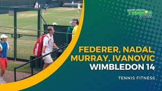 Video Wimbledon 14 - Federer, Nadal, Murray, Ivanovic. download MP3, 3GP, MP4, WEBM, AVI, FLV Juni 2018