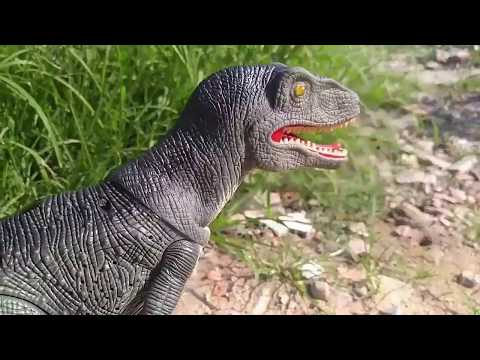 Dinosaurs fighting in the jungle - Tiger - Bear - Dragon - The Best of Dinosaurs In The Earth