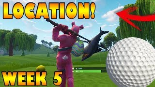 Hit a golf ball from tee to green on different holes | Fortnite | Week5 | Season 5