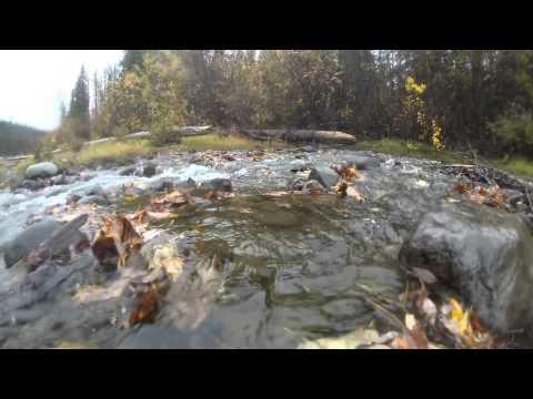 GoPro: Canoe Trip