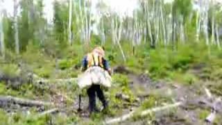 Treeplanting in Northern Ontario