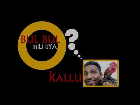 Promo Bul bul mili Kya