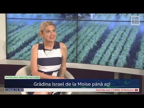 Grădina Israel de la Moise până azi
