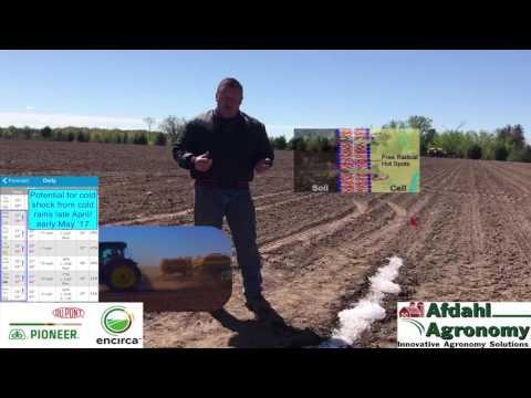 Pioneer GP Agronomy Minute