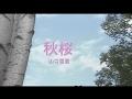 秋桜<コスモス>  カラオケ  山口百恵