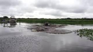 Супруги вычерпывали воду из лодки после сильного ливня и вдруг ЭТО!