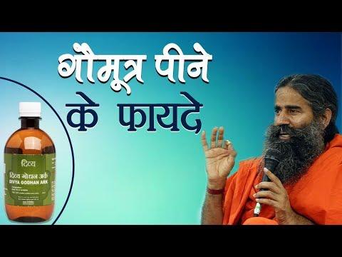 गौमूत्र पीने के फयदे | Swami ramdev