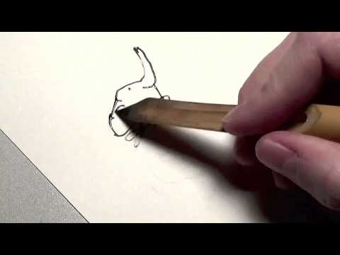 Matthew Cordell Drawing Elephant from WISH With Bamboo Pen