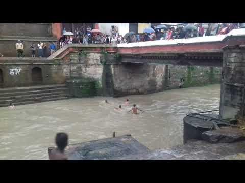 Bagmati  river  swimming at pasupati temple by uddhav Karki