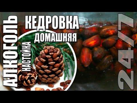 Кедровые орехи - польза и вред, применение настойки и