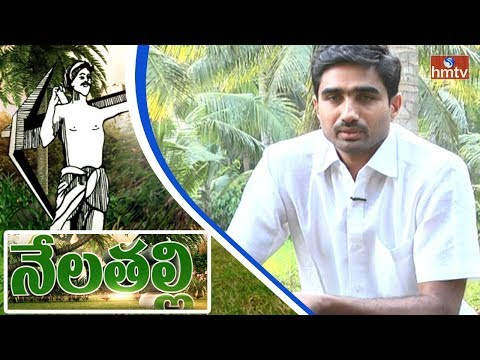 Success Story Of Software Farmer Harikrishna | Natural Farming | Nelatalli | hmtv News