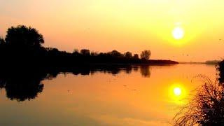 ТАШООР Рыбалка в ноябре Карась Плотва Красноперка