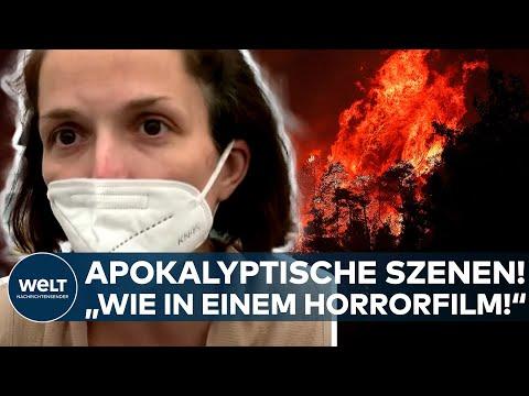 FEUERWALZE: 'Das ist wie in einem Horrorfilm!' - Apokalyptische Szenen auf Euböa I WELT News