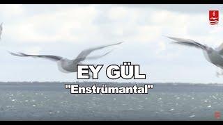 """DURSUN ALİ ERZİNCANLI  """"EY GÜL""""  ENSTRÜMANTAL Resimi"""