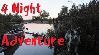 4 Night Adventure with My Dogs and My Woman