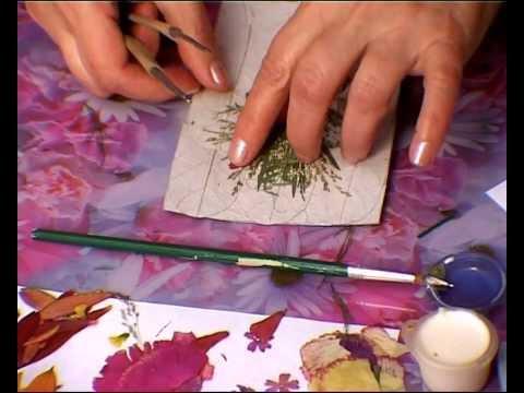 Мастер-класс по созданию картин из сухих цветов, часть II