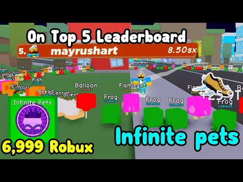 I Bought The Infinite Pet Gamepass And Became Top 4 Best Player In Roblox  Speed Champions