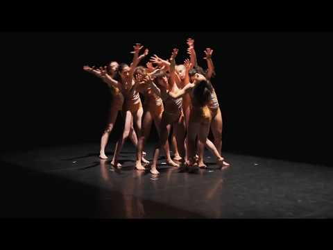 LCP Dance Theatre - Rights(?) - stop violation of human rights
