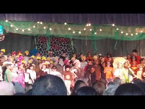 Collinswood Language Academy Performance
