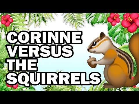 🐿 Hanging with My Squirrel Friends, Corinne VS Gardening
