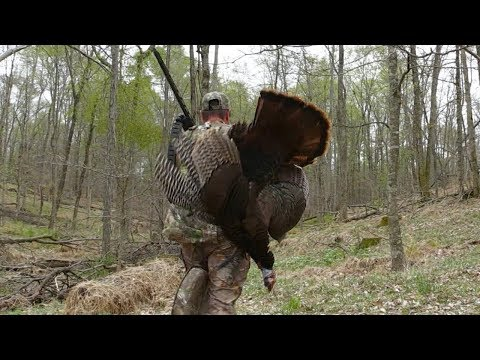 Harvesting A Nice Gobbler On A Spring Turkey Hunt - Bonus Coyote Encounter