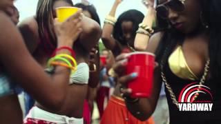 Shaggy Ft Red Fox & GC  Love Mi Jamaica - Official HD Video) 2013