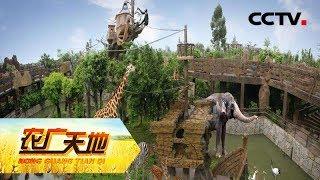 《农广天地》 20190616 90后的新农庄  CCTV农业