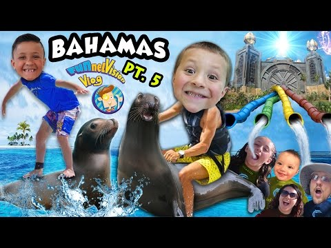 KIDS PLAY w. SEA LIONS + POWER TOWER WATER...