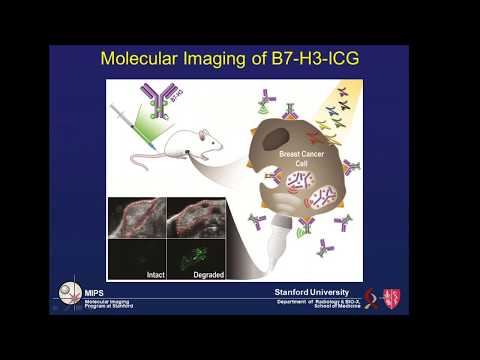 June 2017: Photoacoustic Molecular Imaging of Breast Cancer using Antibody-Dye Contrast Agents