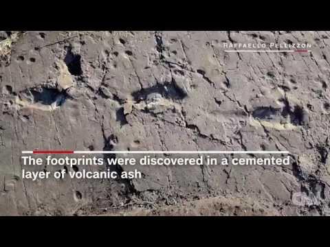 32727 Archéologie Mensch CNN Pre human footprints give mating clues