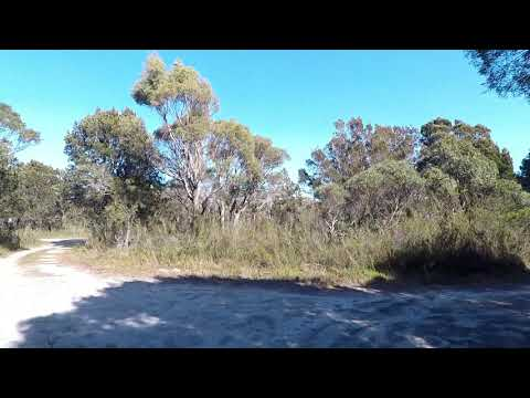 Grants Lagoon Campground Binalong Bay of Fires Free Camping St