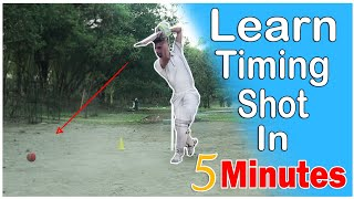 How to improve batting timing in cricket !! How to Time a Cricket Stroke !!